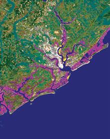 land_managment