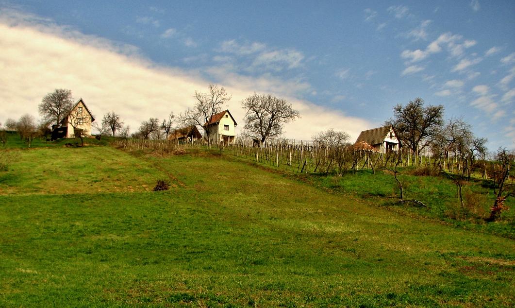Viničný vrch v M. Čalomiji