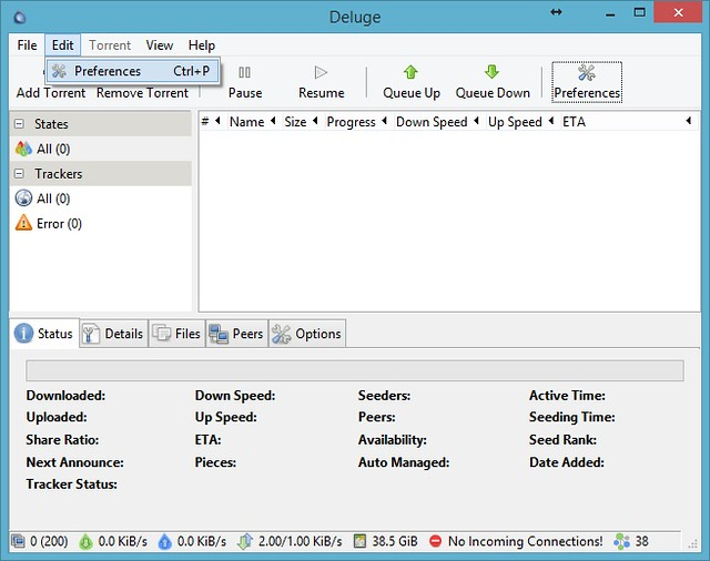 Deluge Desktop 01