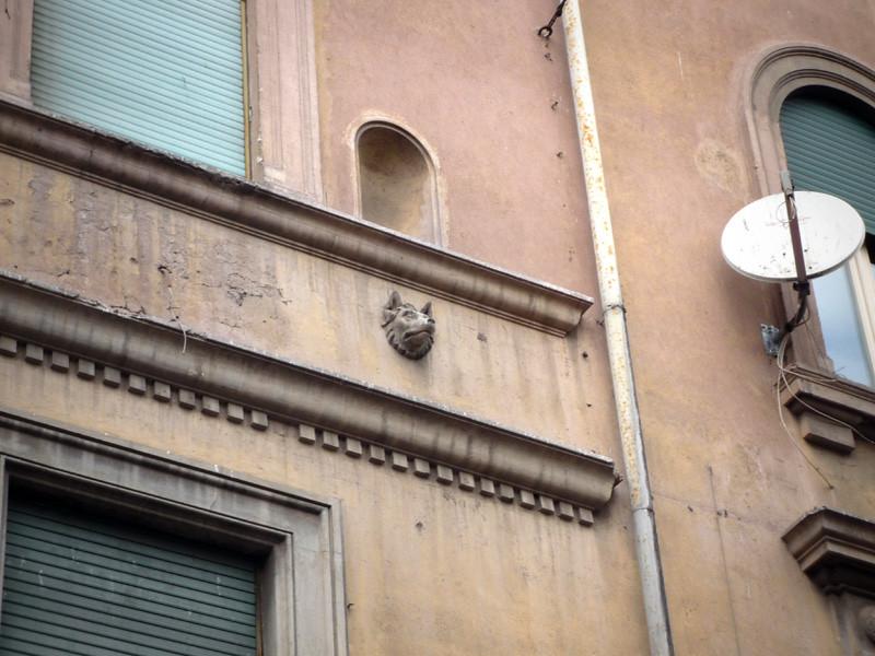 Lupo Romano Trastevere