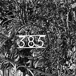 385  TriXFeb_0006 Pyro HD