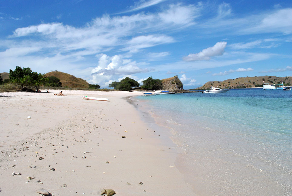 Pink Beach in Komodo Island