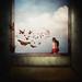 innate sensitivity by Kasia Derwinska