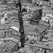 Roofs and roads of Siena by tom.leuzi
