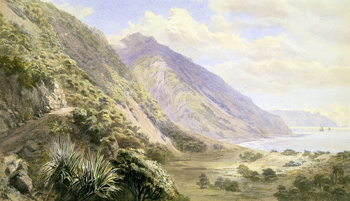 006- Paekakariki-Gully, John, 1883, New Zealand-Museo Te PapaTongareva