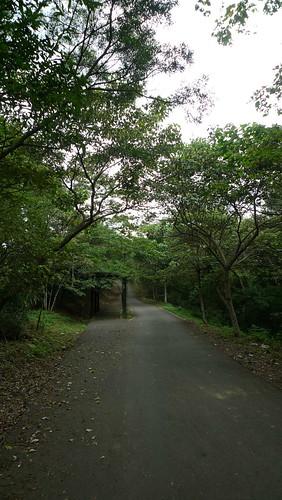 20140621-苗栗行 (47)