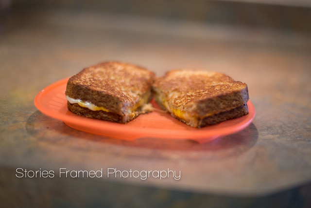 211.365 | grilled cheese.