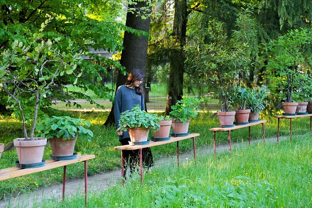 Botanischer Garten Padua, Italien