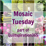 Color Mosaic Tuesday