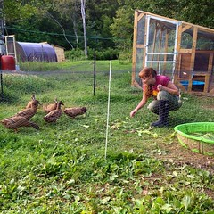 Olivia with the ducks.