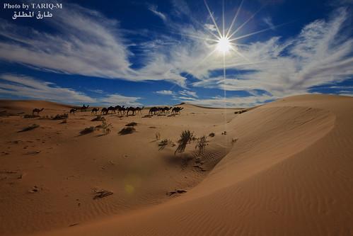 art texture sahara landscape sand waves pattern desert ripple patterns dunes wave ripples camels riyadh saudiarabia dahna canoneos5dmarkii tariqm aldahna tariqalmutlaq 100606169424624226321poststariqm1