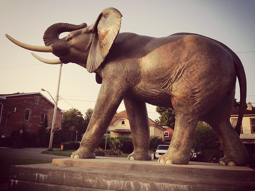 The Jumbo statue that you see when coming up the hill to enter the city that killed him. #sttont