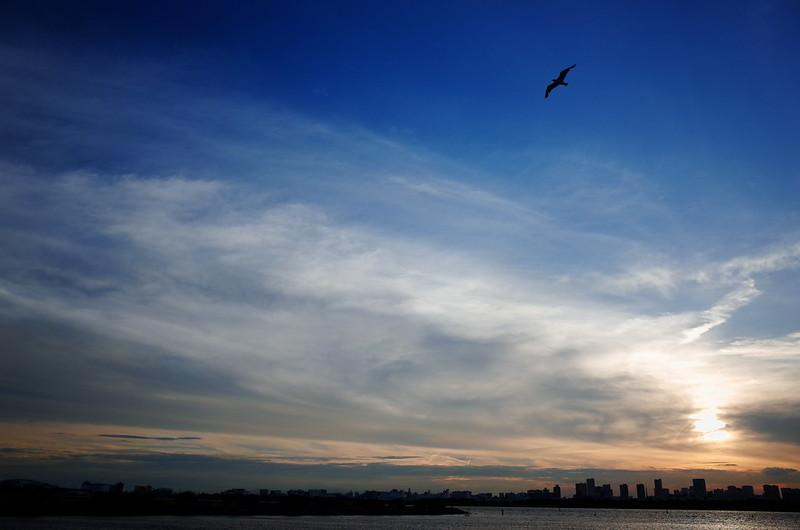 空もよう 20140803-01