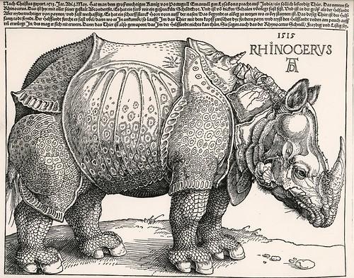 Durers-rhino-1515