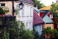 Oslo, le case.