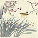 Plum, bunchflower daffodil and winter wren