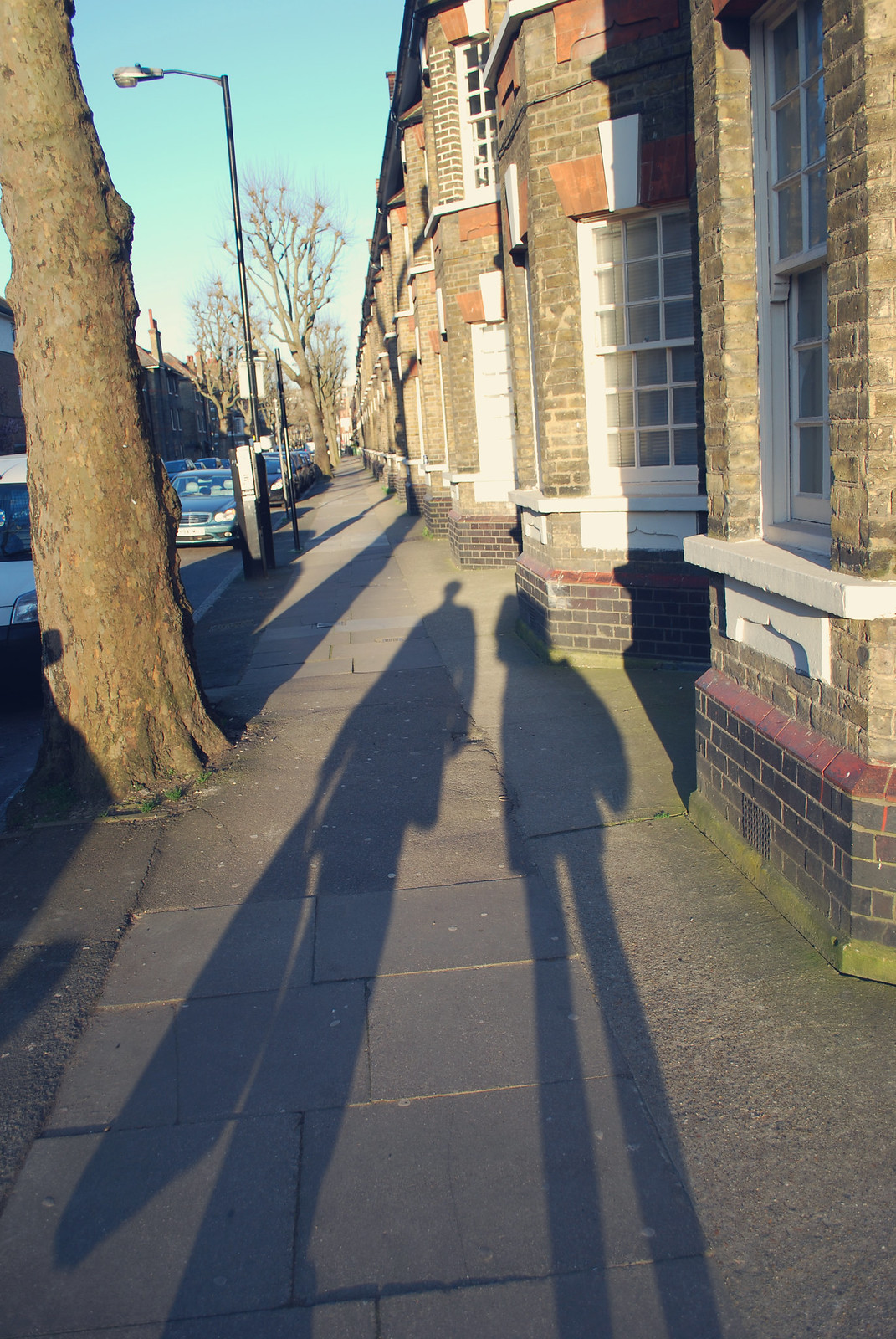 Walworth Shadows