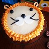 Little Lion Cake for a special 3 year old! Happy Birthday Gideon! #divinecupcake #littlelion #birthdaycake