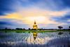 Wat Muang with gilden giant big Buddha statue