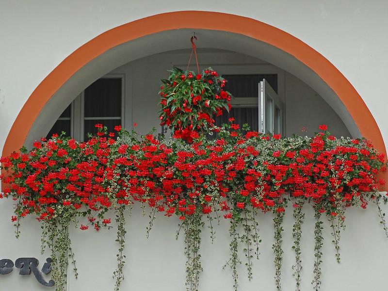 Maribor Floral Balcony
