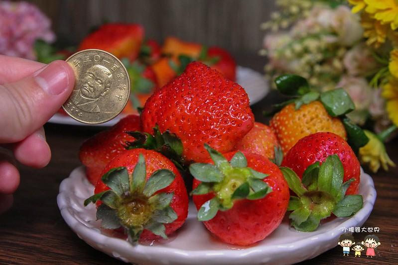 彰化草莓 008