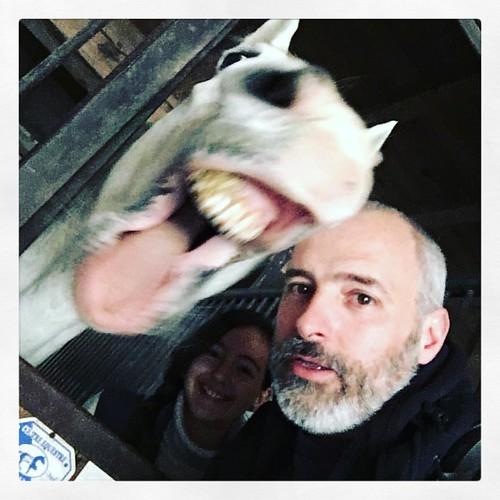 #oups #moi #france #today #lyon #selfie #rire #tete #lol