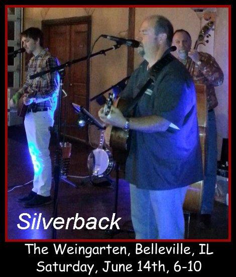 Silverback 6-14-14