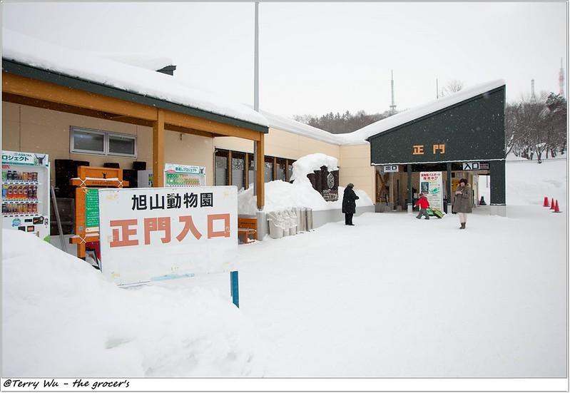 Day5 - 旭山動物園 - 企鵝散步-9