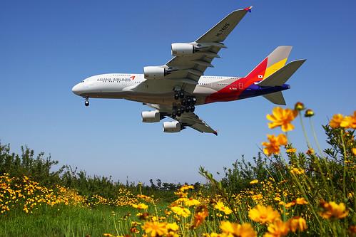 A388 - Airbus A380-841