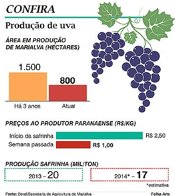Produção de uva