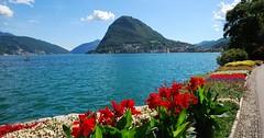 Švýcarsko - země vody