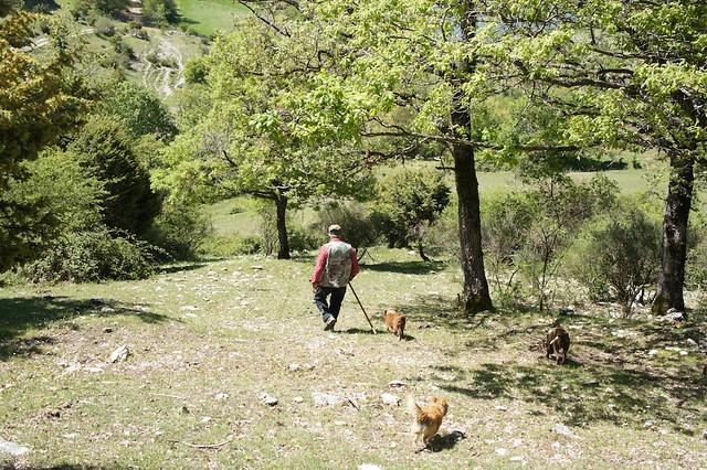 truffle-hunt-umbria-cr-brian-dore