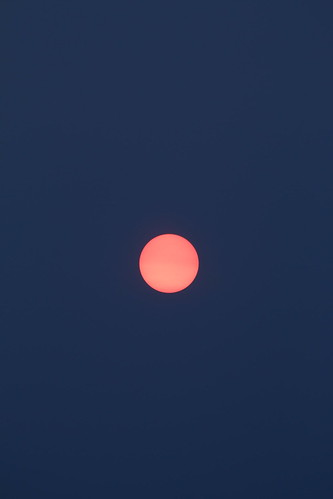 Sun (SOTC 108/365)
