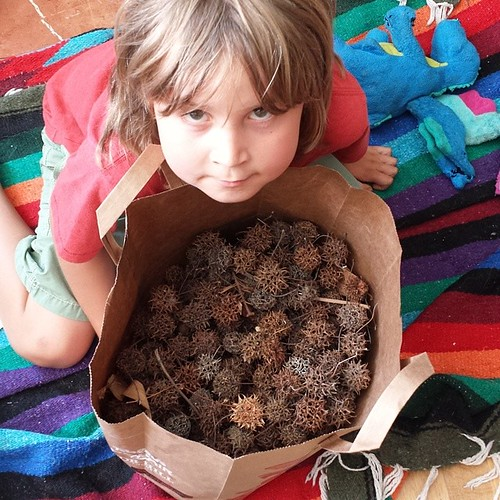 My children have learned the value of money. They both have things they want to buy, and are seeking jobs to earn cash. Asher claims this is 600 spikey balls, worth a penny each (because I hate them littering my yard). Lucas is presently sweeping and mopp
