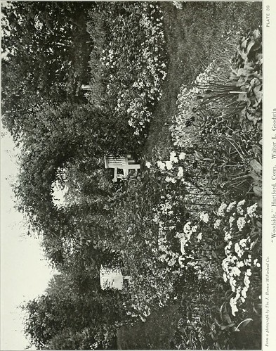 Image from page 116 of