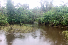 Lomiro River