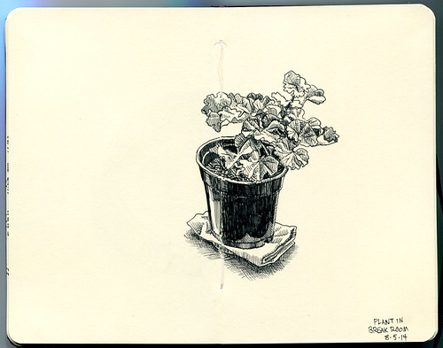 plant in break room