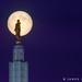 Super Moon by James Neeley