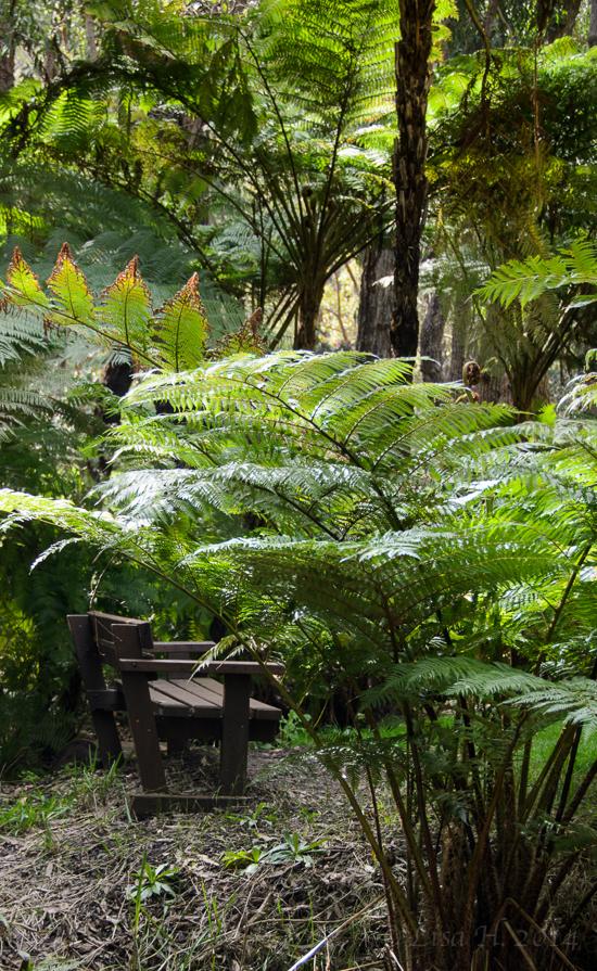 Araluen Botanical