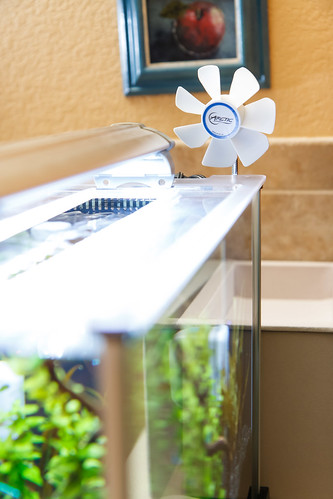 evaporative cooling for an aquarium