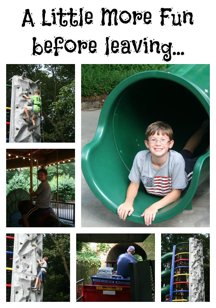 Fun Times at the Zoo