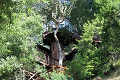 The Blckthorne Inn in Point Reyes is a grown up tree house