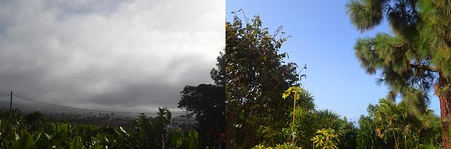 Sunny, Cloudy North Tenerife
