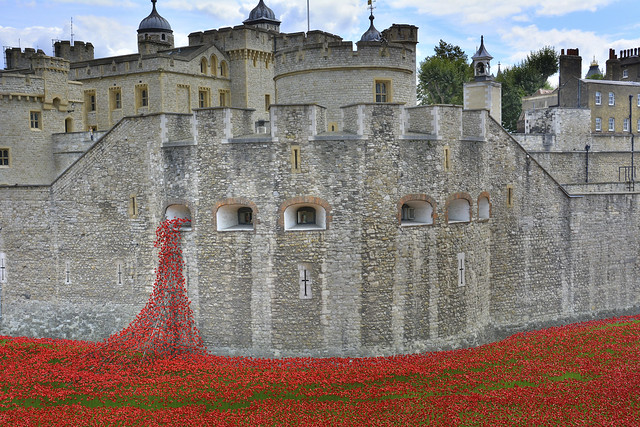 Poppies At The Tower Of London 23-8-2014 from Flickr via Wylio