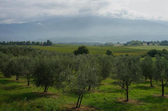 Italy-15.jpg