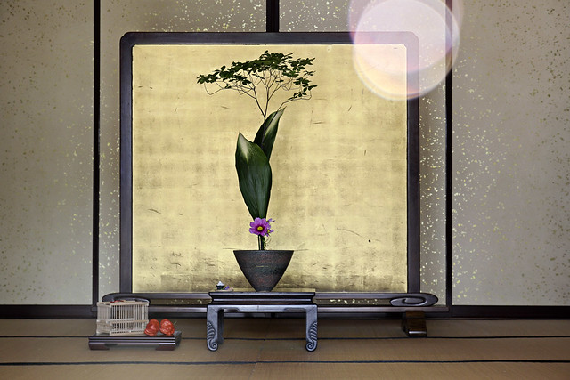 unusual ikebana