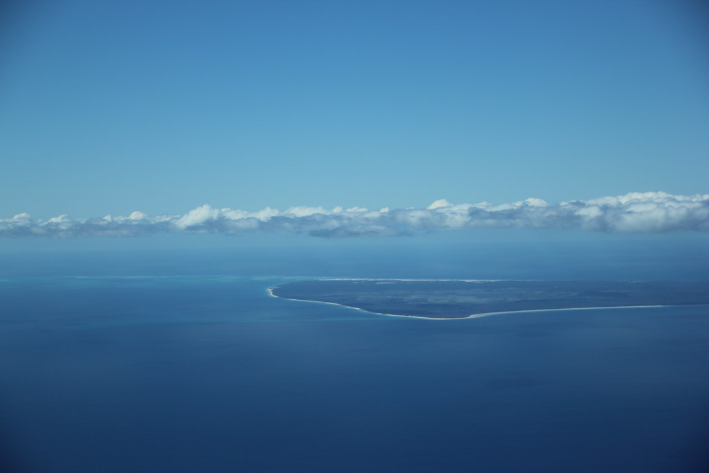hervey bay, lady elliot island, great barrier reef, white cap noddy, brown noddy, common rail, oyster catcher, snorkelling, fraser island. flight, fraser coast