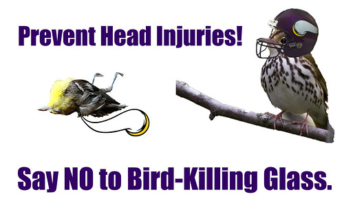 Sign created by me and Michael Geraci with regard to the bird-killing glass on the new Vikings stadium