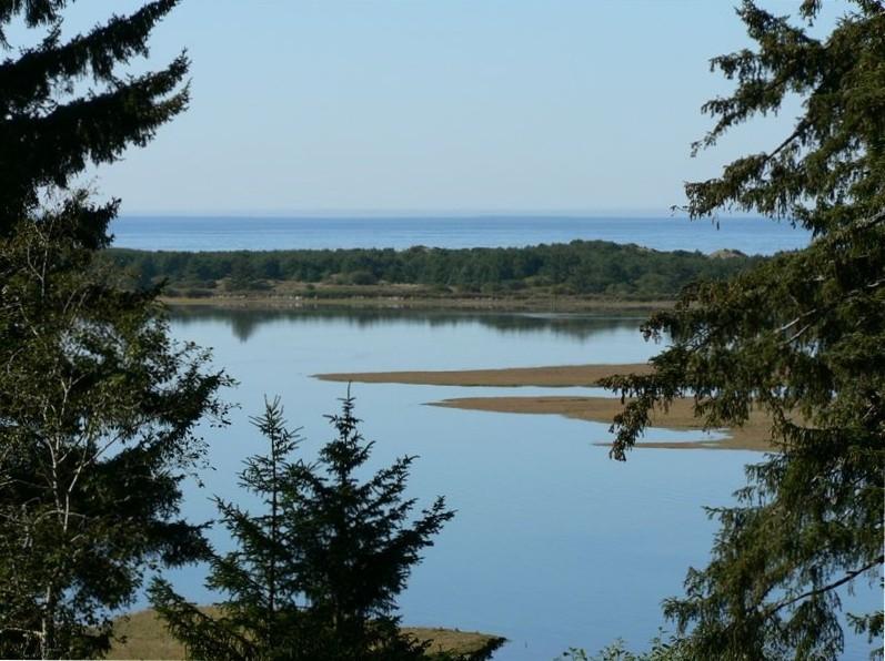 Sand Lake estuary - Creeklife