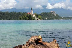 Bled: The Church of the Assumption and the castle